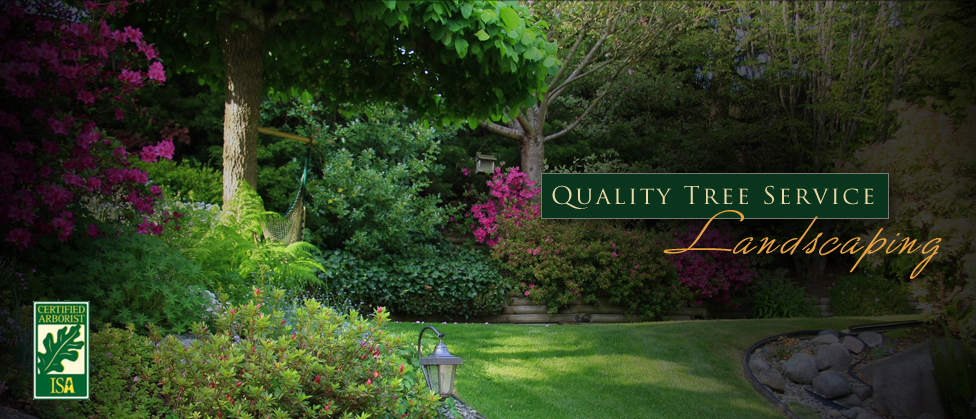 Quality Tree Service - Landscaping